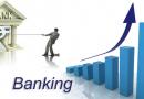 კომერციული ბანკების როლი ქვეყნის ეკონომიკის განვითარებაში
